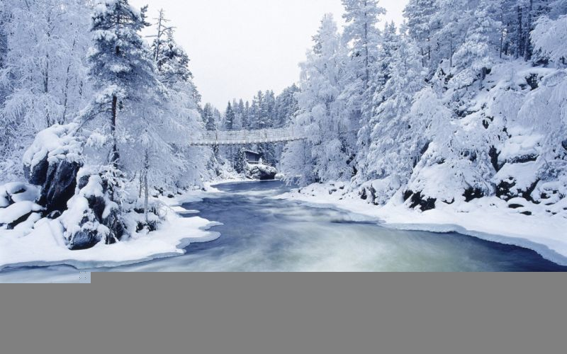 snow trees snow landscapes rivers wallpaper