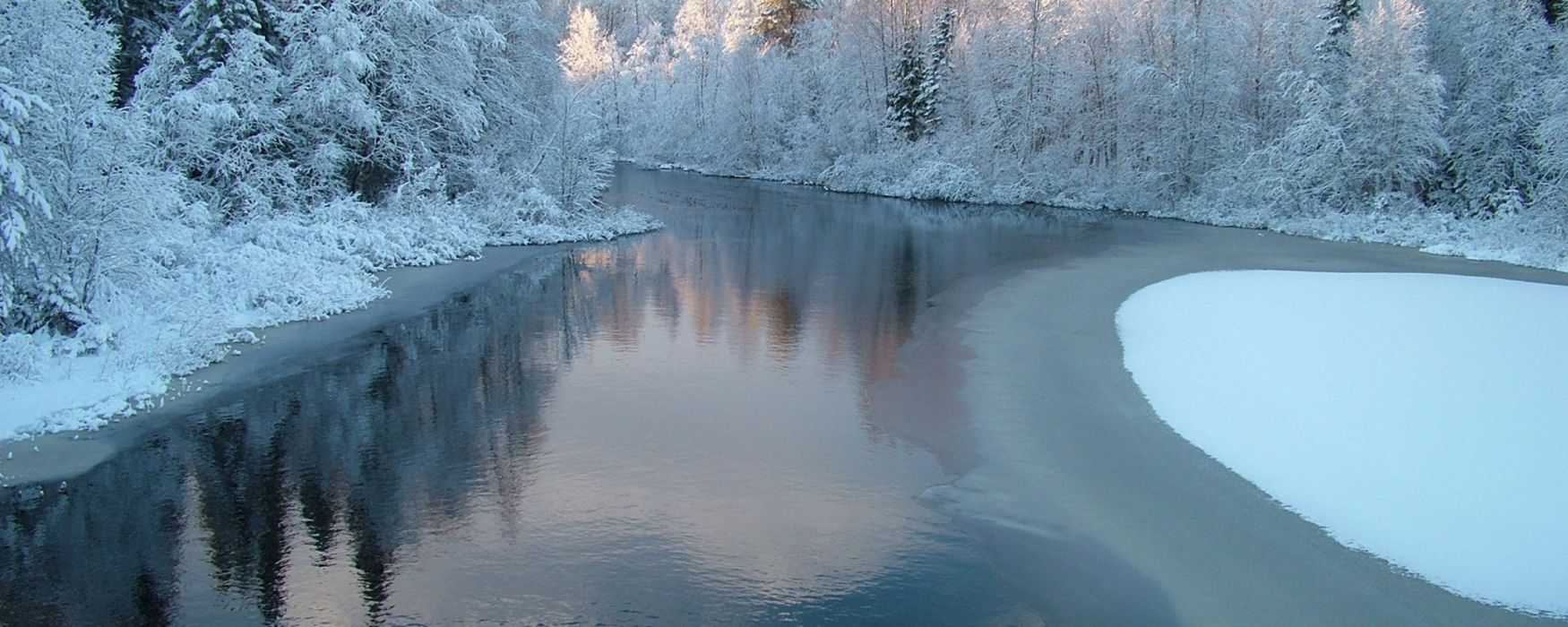 winter snow trees rivers wallpaper