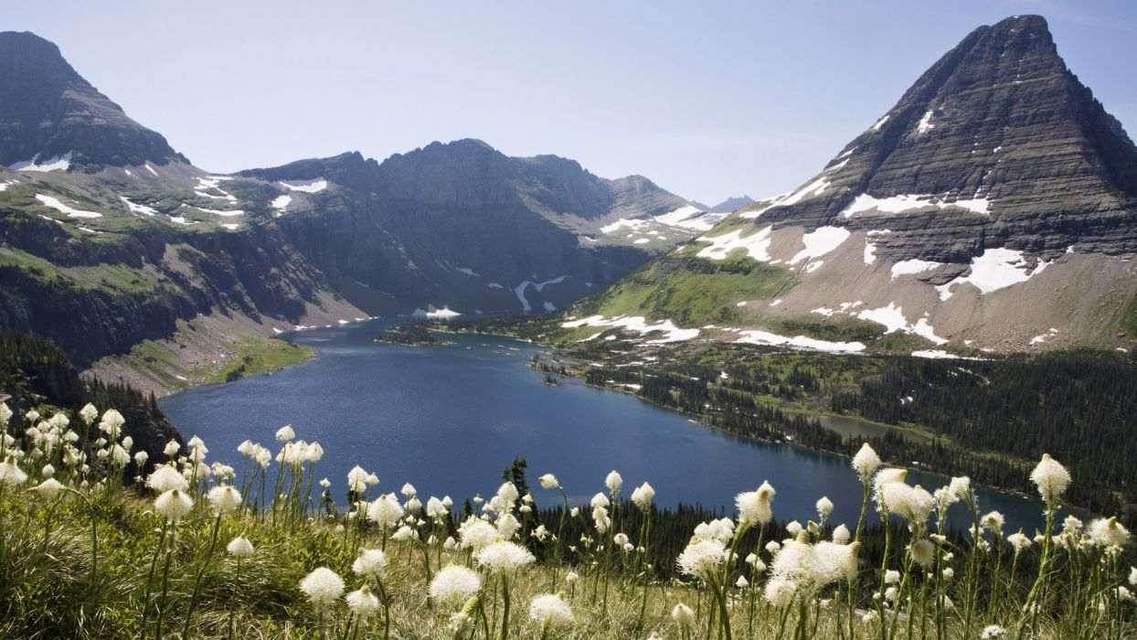 mountains landscapes nature grass Canada glacier British Columbia lakes National Park land white flowers wildflowers wallpaper