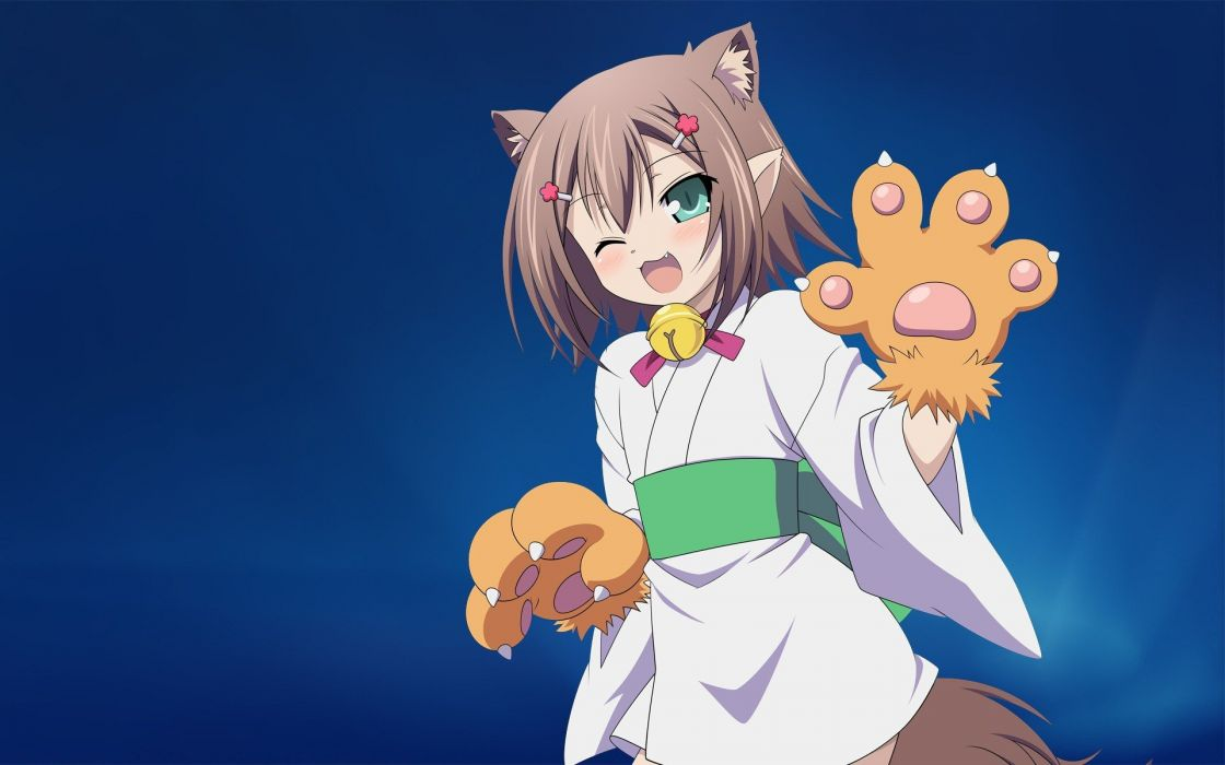 brunettes tails trap green eyes animal ears Baka to Test to Shoukanjuu fangs Kinoshita Hideyoshi Photoshop Japanese clothes simple background blue background wallpaper