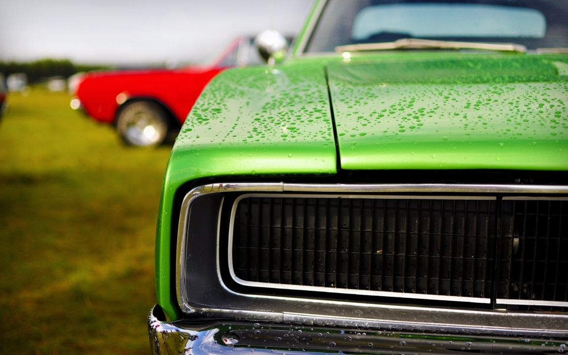 close-up cars water drops Dodge Charger R/T wallpaper