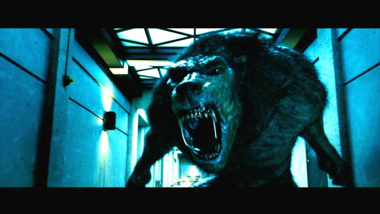UNDERWORLD action fantasy thriller dark lycan werewolf gd wallpaper