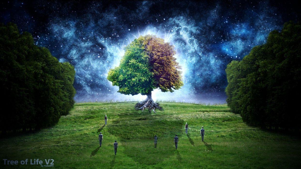 trees fantasy art digital art Tree Of Life Starry Night Fantastic wallpaper
