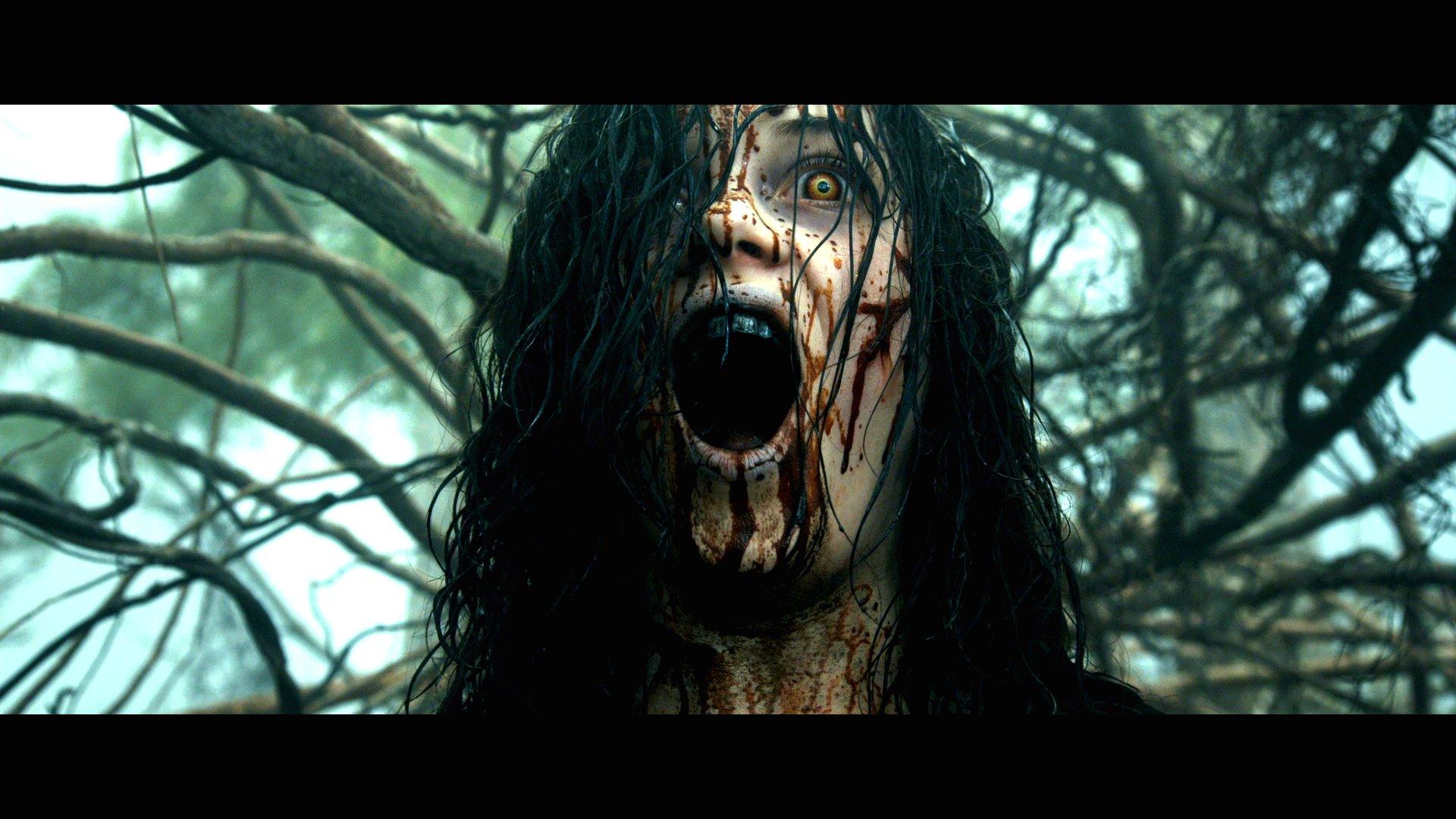 EVIL DEAD Horror Dark Zombie Blood Dw Wallpaper