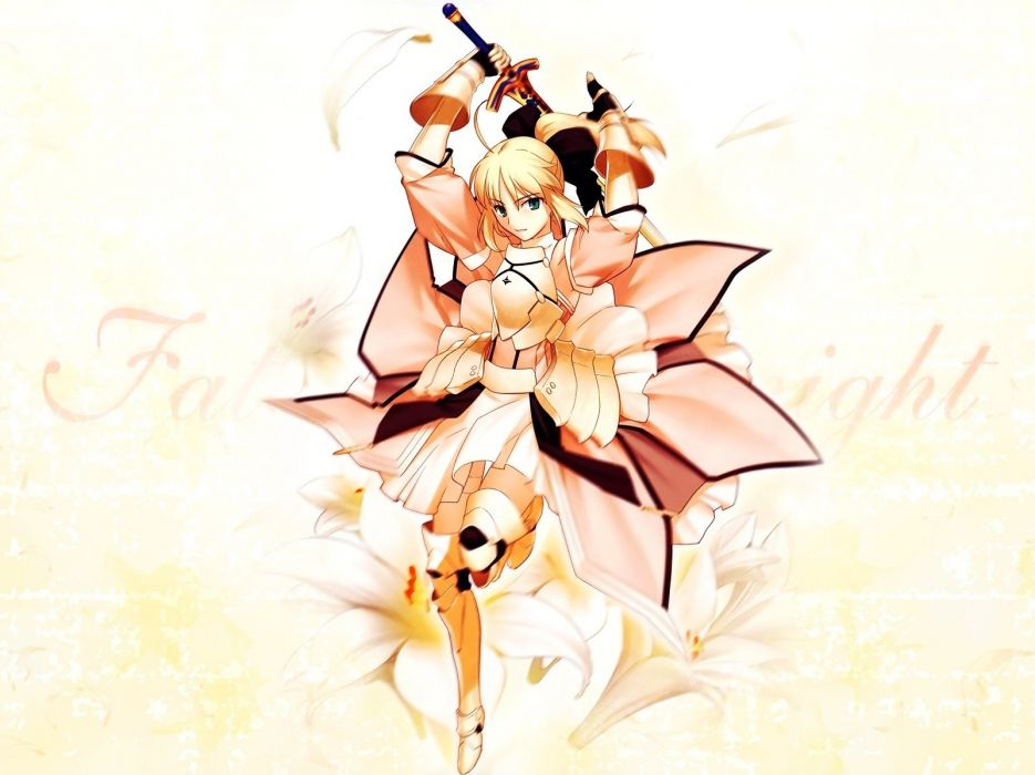 Fate/Stay Night Fate Unlimited Codes Type-Moon Saber  Saber Lily detached sleeves Fate series wallpaper