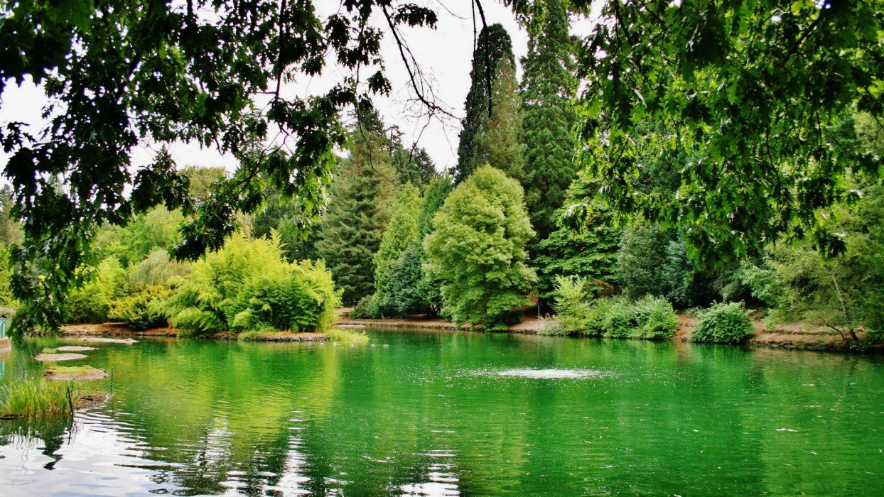green landscapes nature trees spring lakes parks wallpaper