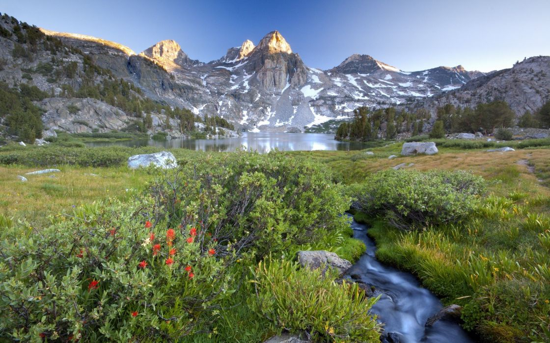 light mountains flowers stones peaks streams brook Tarn bushes alpine highterrain wallpaper