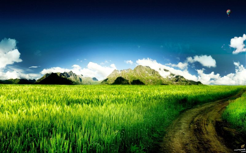 green nature fields skyscapes wallpaper