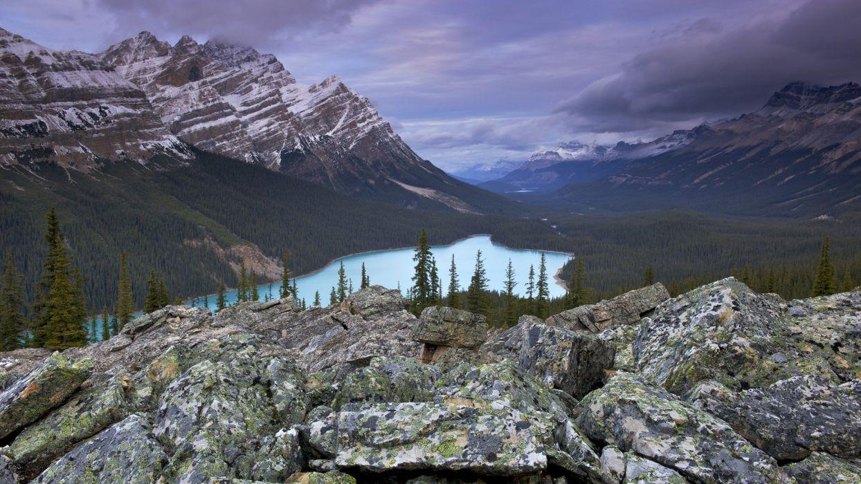 Alberta bows Banff National Park National Park wallpaper