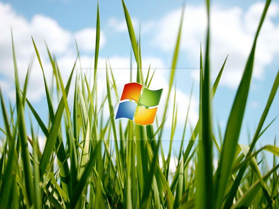 Microsoft Windows logos wallpaper
