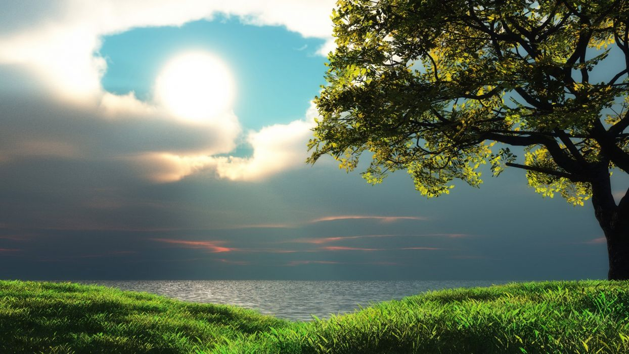green ocean landscapes nature Sun trees grass HDR photography skyscapes sea wallpaper