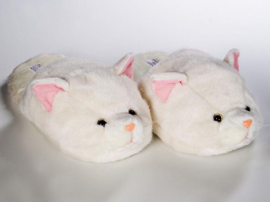 cats slippers wallpaper