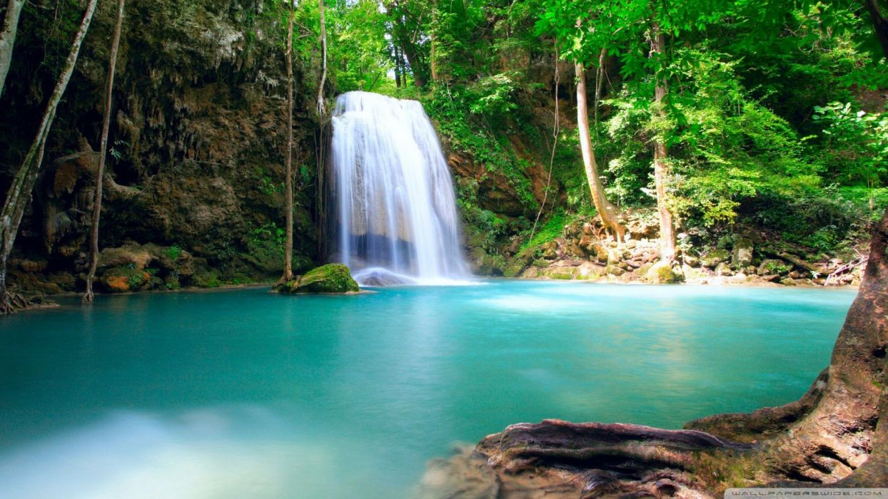 water nature forests summer falls lakes wallpaper
