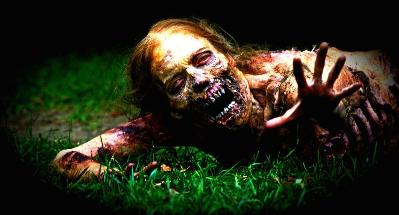 THE WALKING DEAD dark horror zombie     fs wallpaper