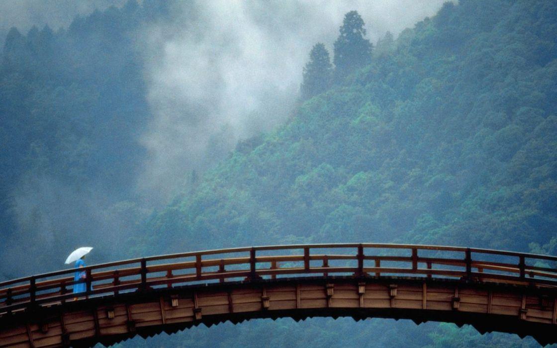 landscapes trees forests fog bridges wallpaper