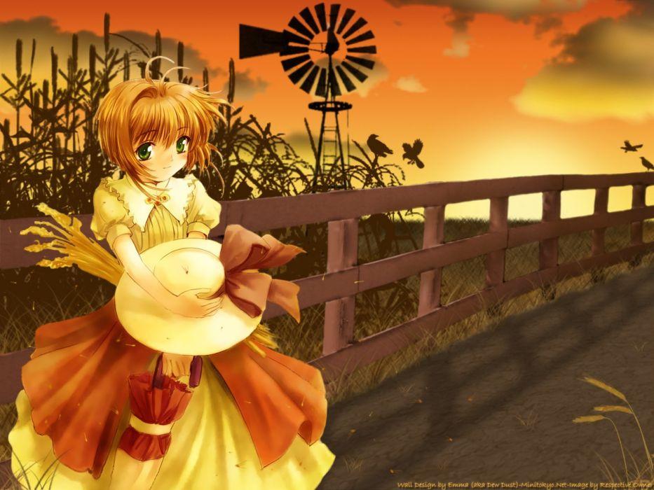 Cardcaptor Sakura anime girls wallpaper