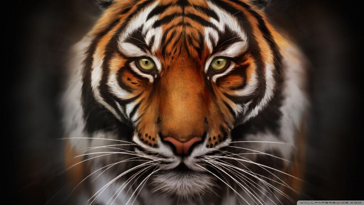 save the tiger-wallpaper-1920x1080 wallpaper