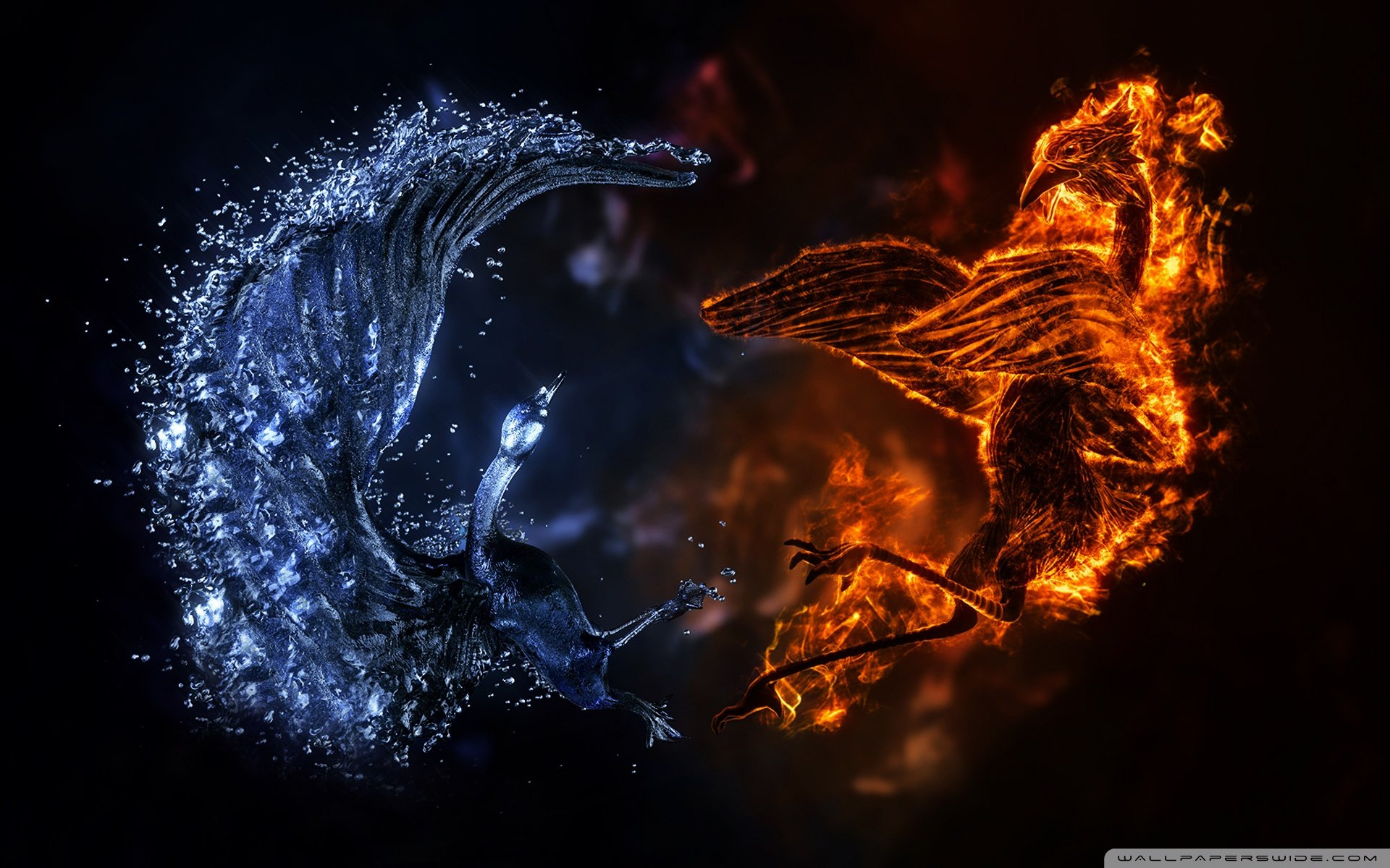 elemental birds wallpaper 1920x1200 wallpaper 1920x1200