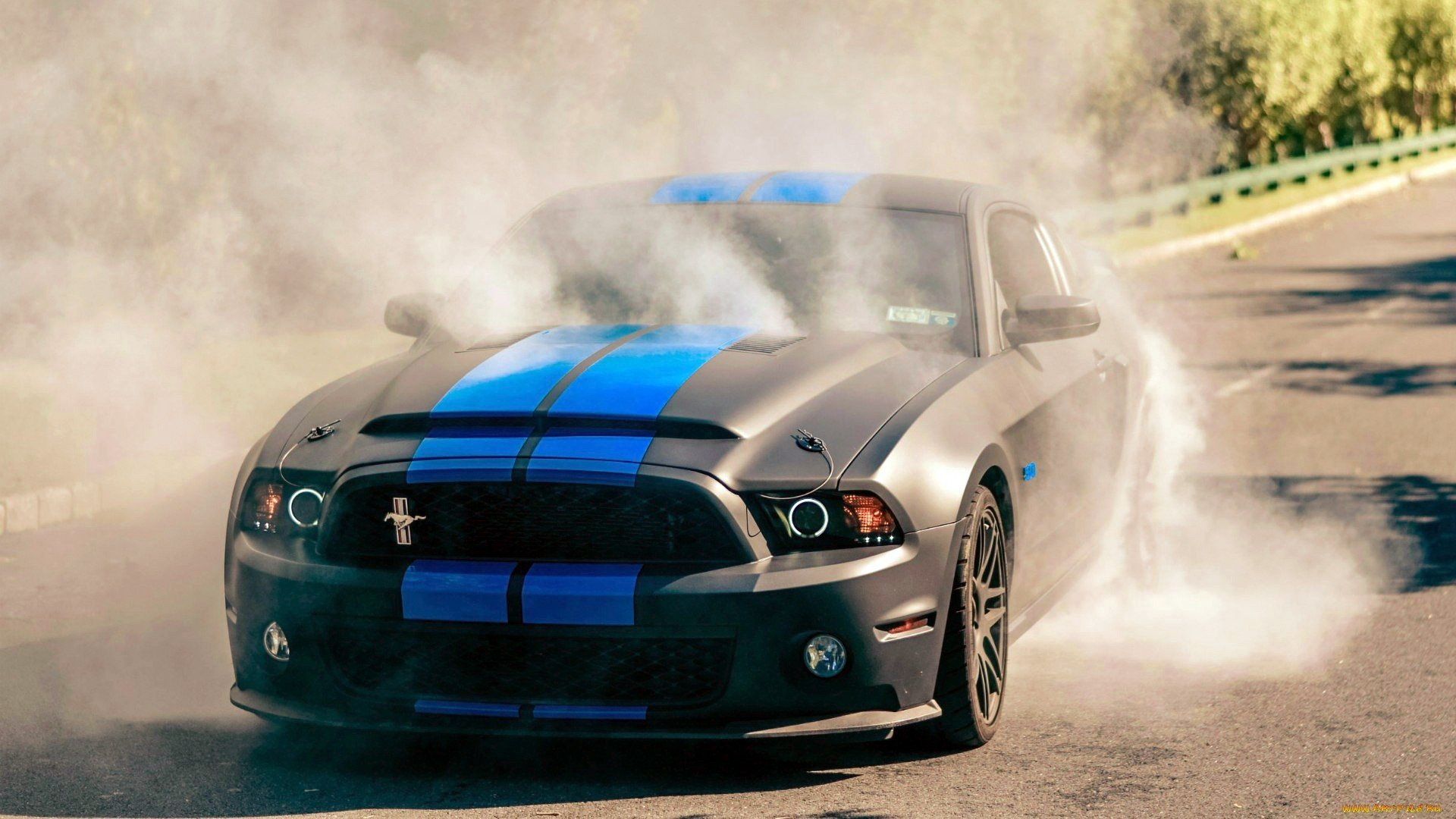 Ford ford mustang burnout muscle car shelby gt500 shelby gt 500 gt 500 supersnake mustang gt wallpaper 1920x1080 238769 wallpaperup