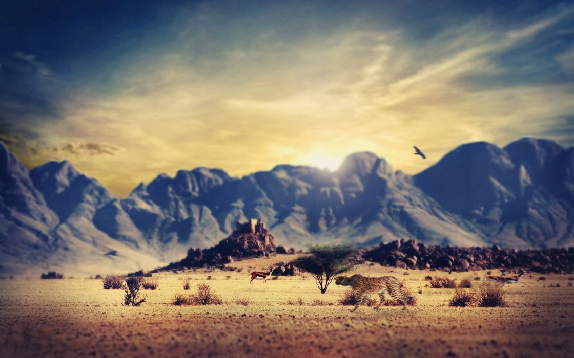 deserts wastelands wallpaper