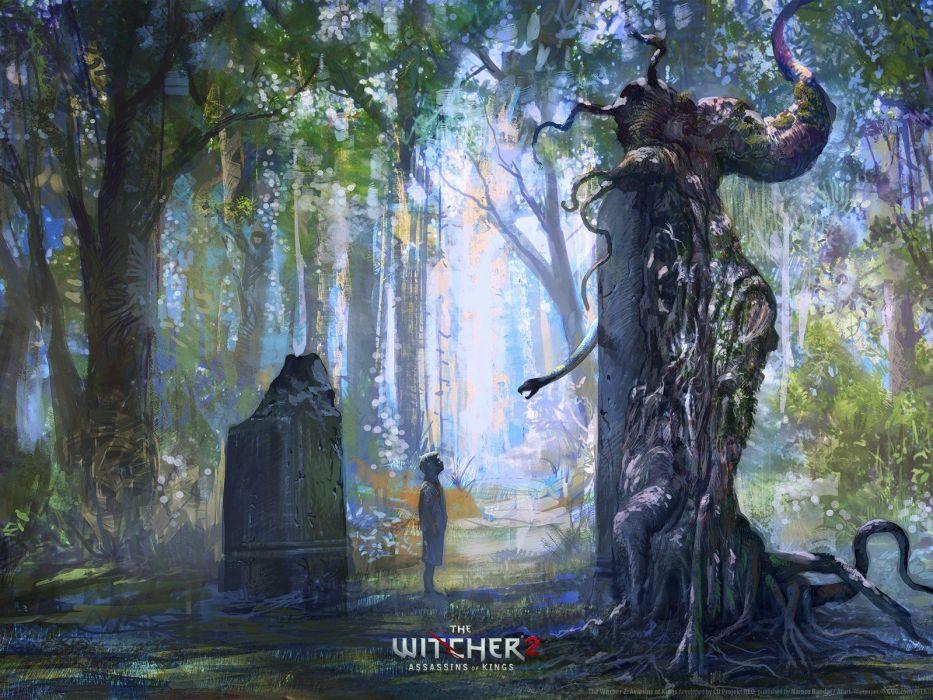 artwork The Witcher 2: Assassins of Kings wallpaper
