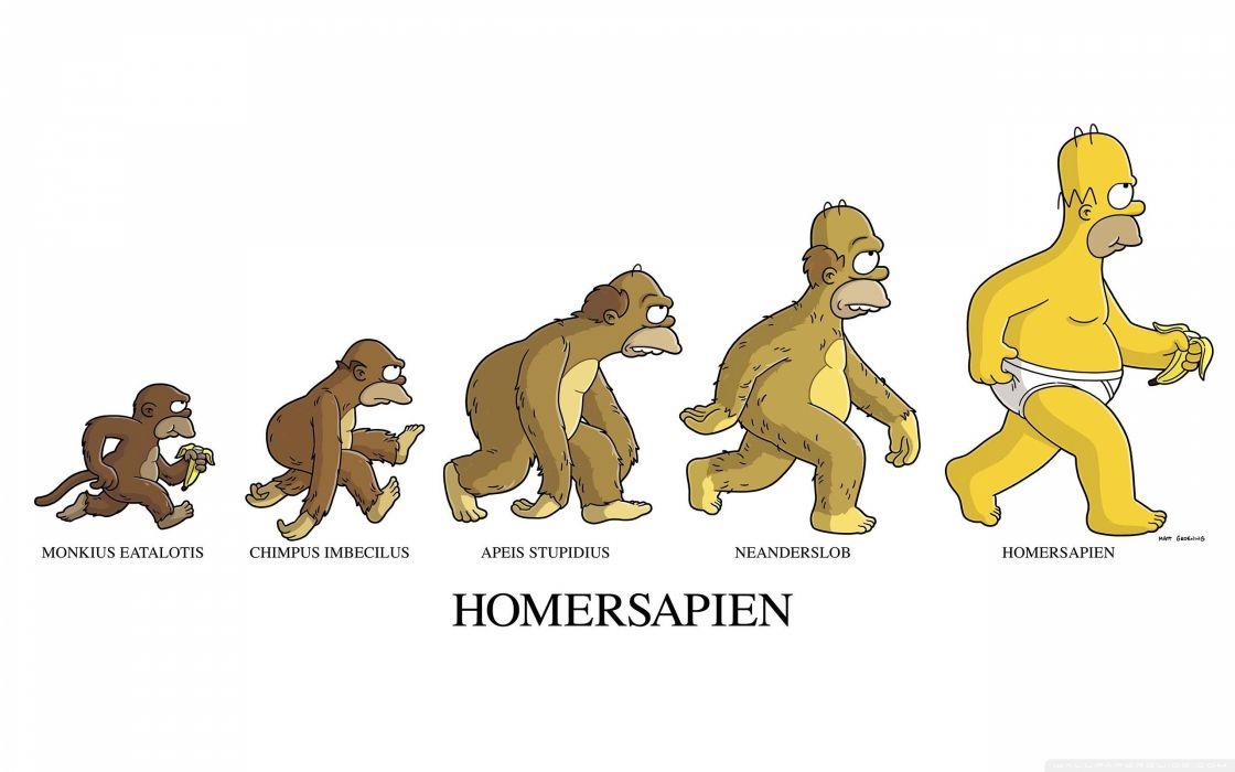 homersapien-wallpaper-2560x1600 wallpaper