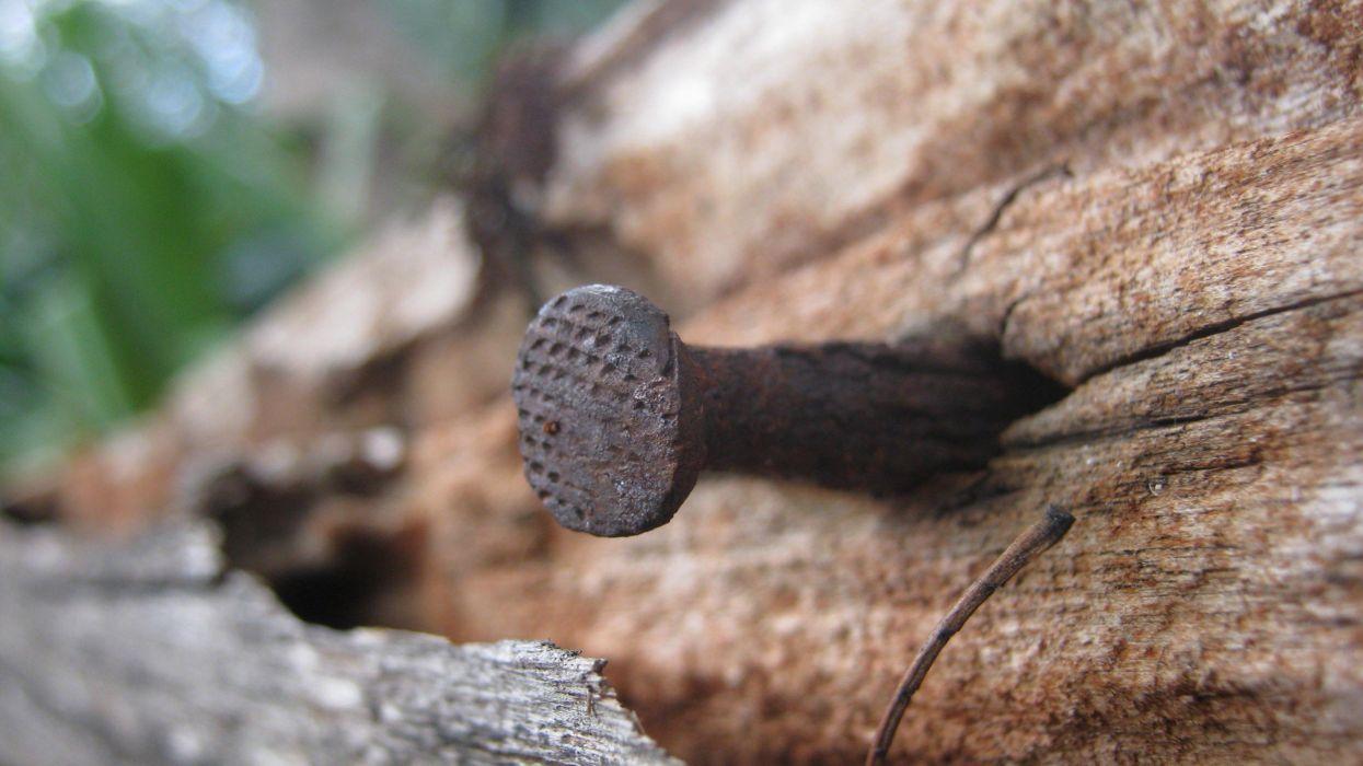 nature wood nails macro wallpaper