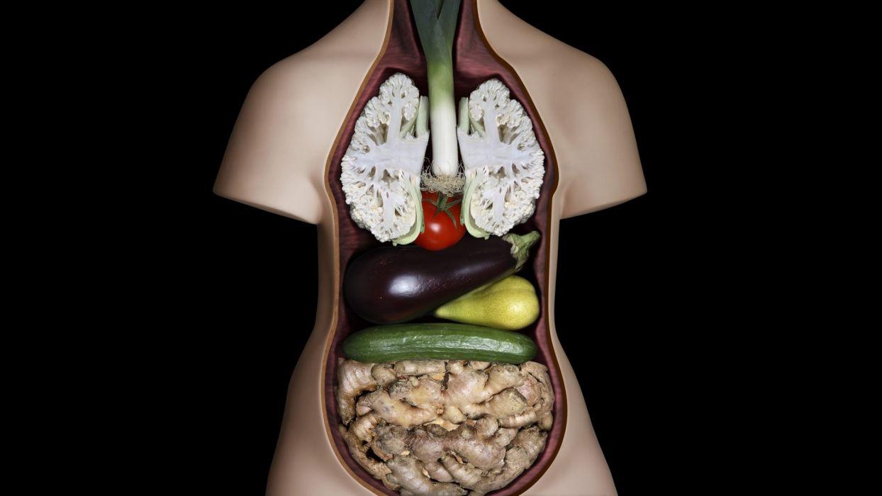 vegetables system anatomy wallpaper