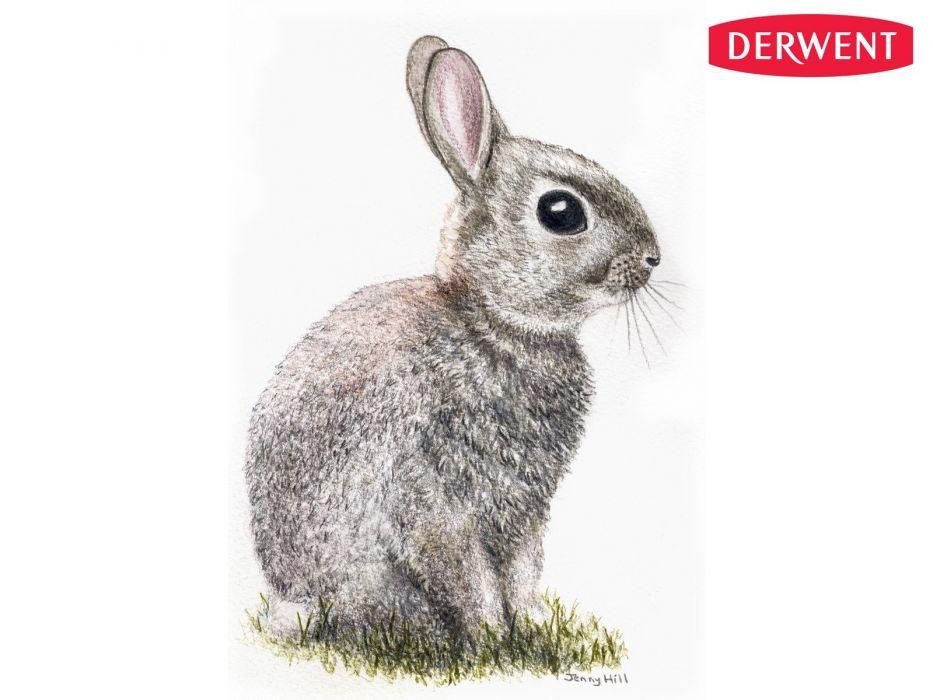 baby rabbits artwork Jenny wallpaper