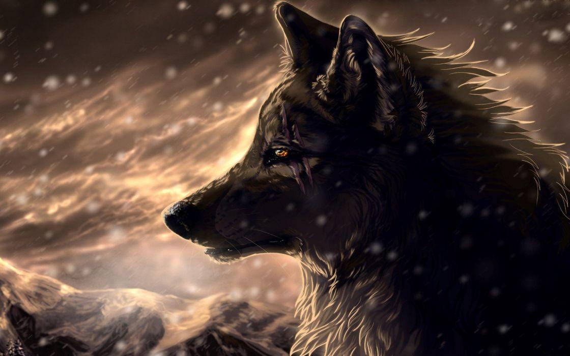 animals wolves wallpaper