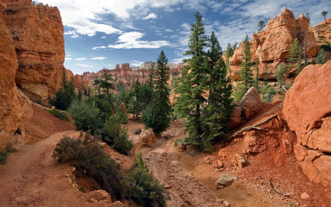 landscapes nature trees rocks canyon wallpaper