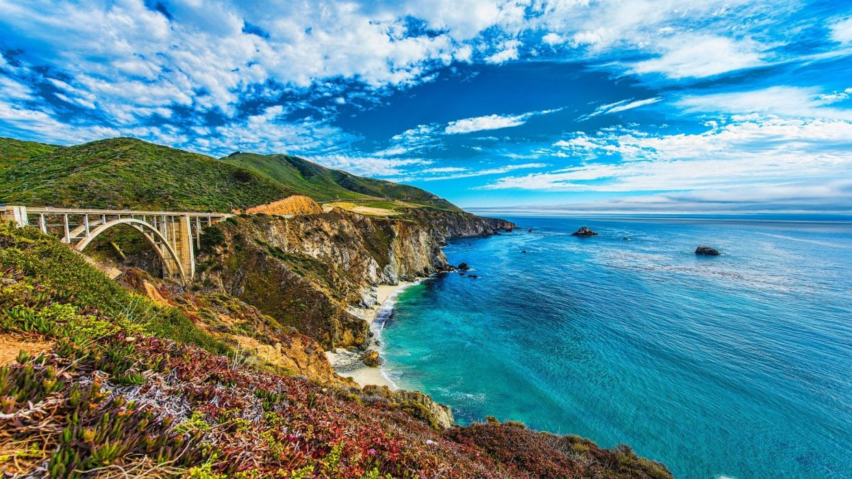 landscapes nature flowers hills cliffs oceans seaside cove Skie beaches wallpaper