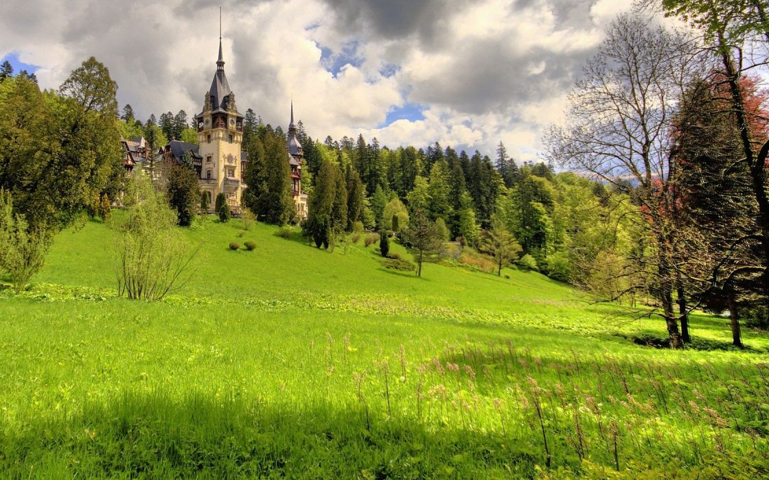 nature castles trees grass fields palace wallpaper