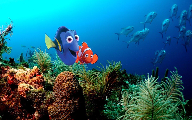 Finding Nemo Disney Walt Disney Movies Fish Animation: Pixar Disney Company Finding Nemo Animation Wallpaper