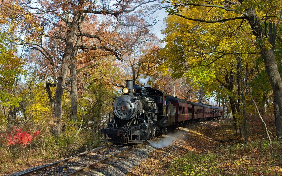 nature trees trains Steam train wallpaper