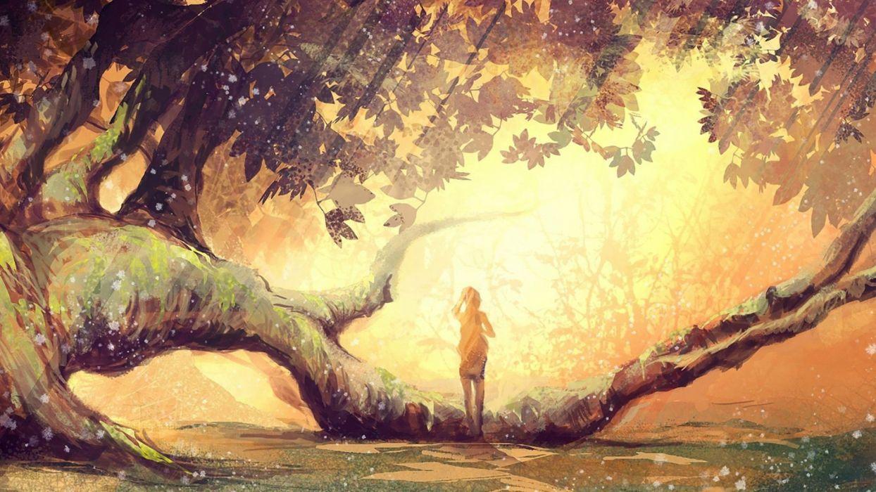 forests fantasy art wallpaper