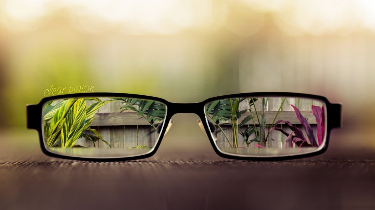 artistic flowers glasses vision out of focus focused wallpaper
