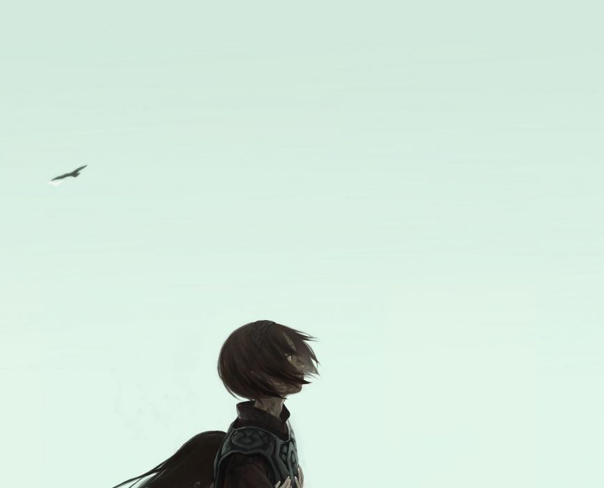 SHADOW OF THE COLOSSUS action adventure fantasy (8) wallpaper