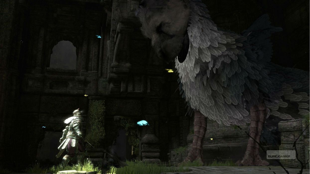 THE LAST GUARDIAN action adventure fantasy (38) wallpaper