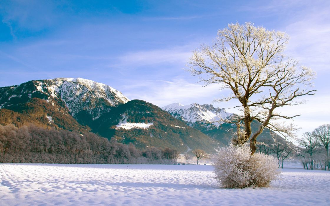 mountains landscapes nature winter snow trees forests skyscapes wallpaper