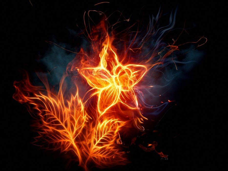 abstract flames flowers fire digital art artwork fire flower wallpaper