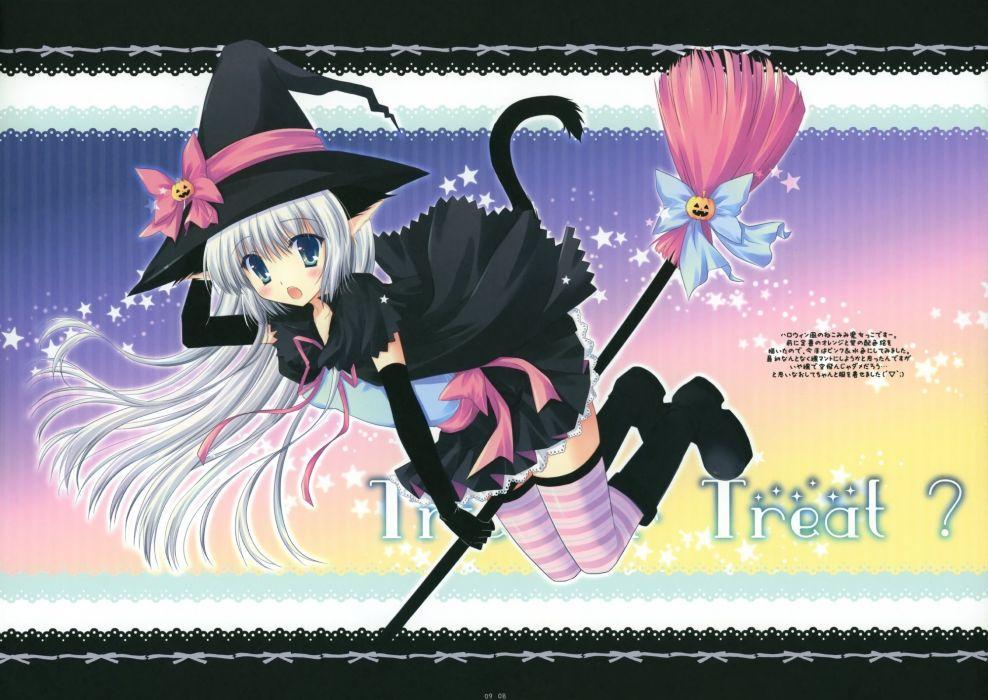 witch Halloween nekomimi anime wallpaper