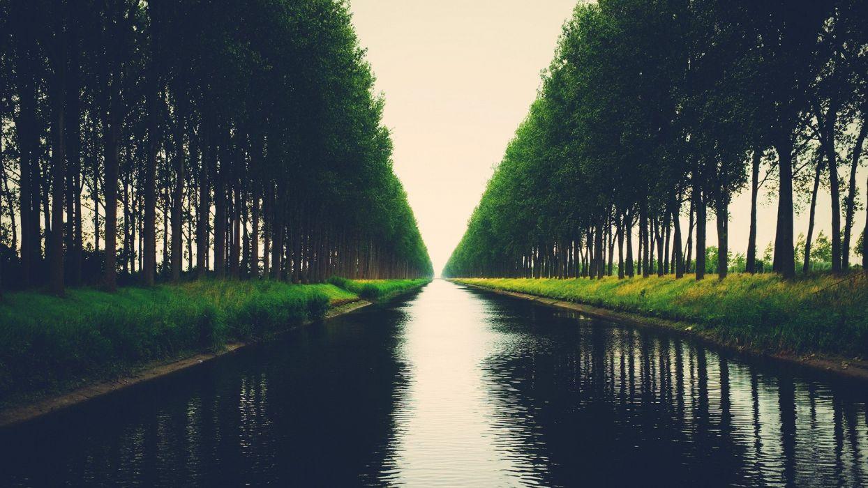 trees rivers wallpaper