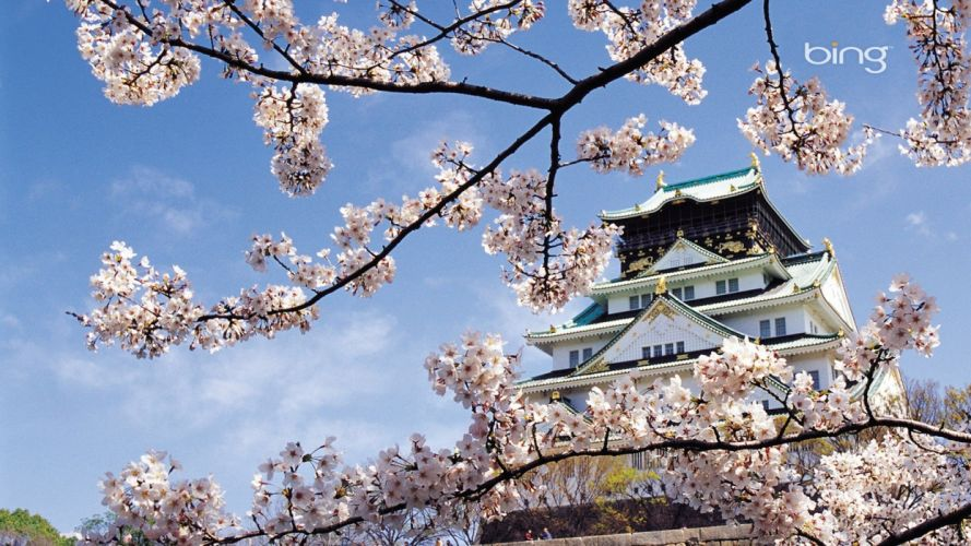 landscapes nature cherry blossoms oriental spring flowers Temple wallpaper