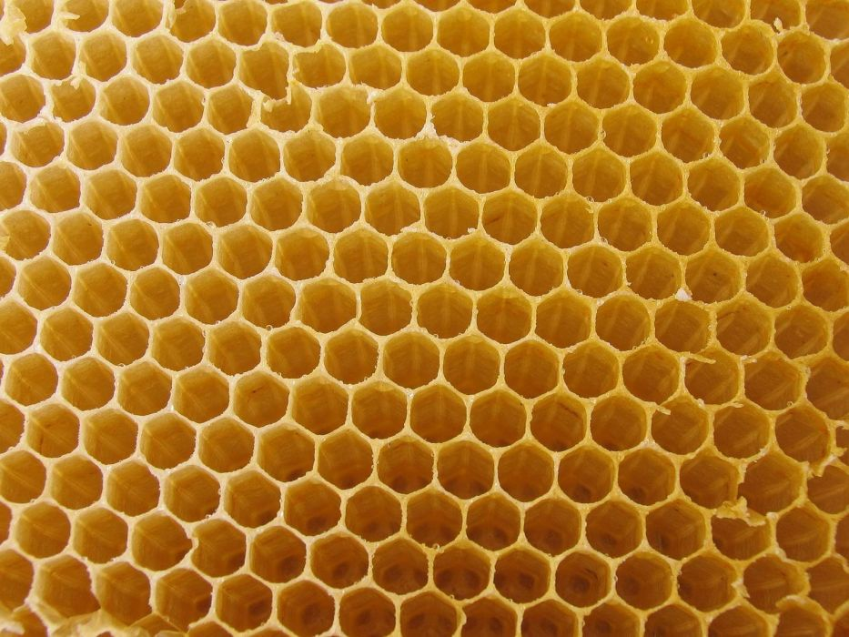 white tiger textures macro honeycomb wallpaper