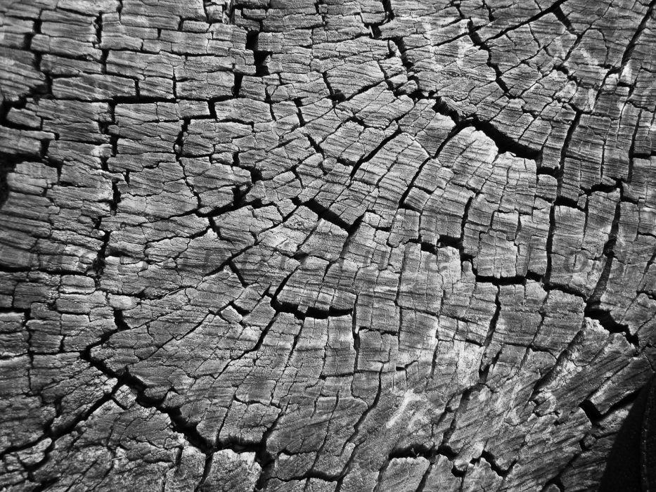wood scratches monochrome cracks wallpaper