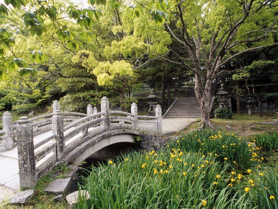 nature trees grass bridges wallpaper