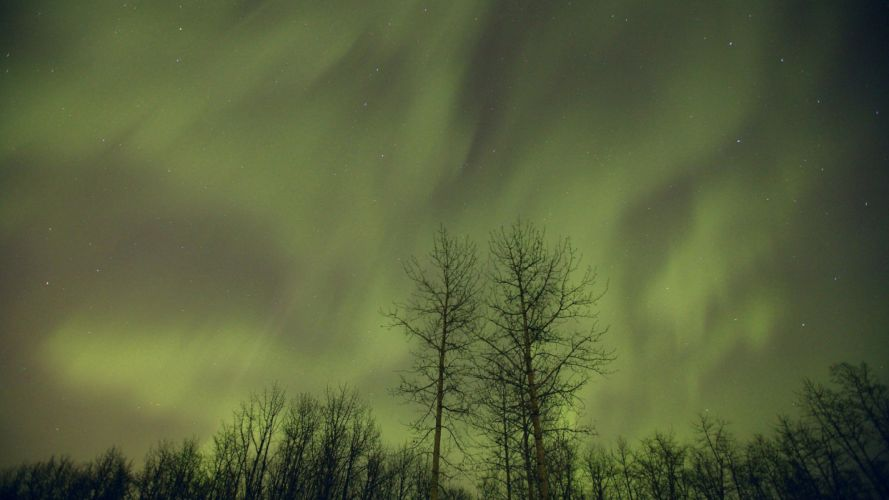 aurora borealis Canada Alberta wallpaper