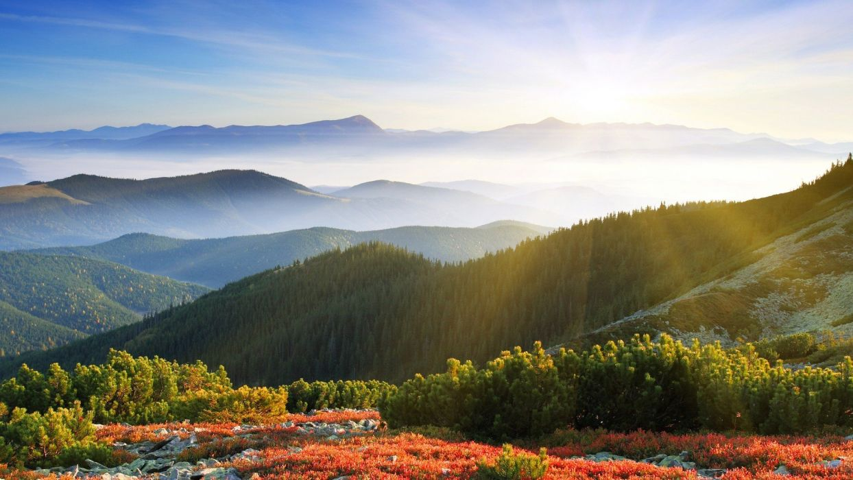 mountains landscapes nature trees forests hills wallpaper