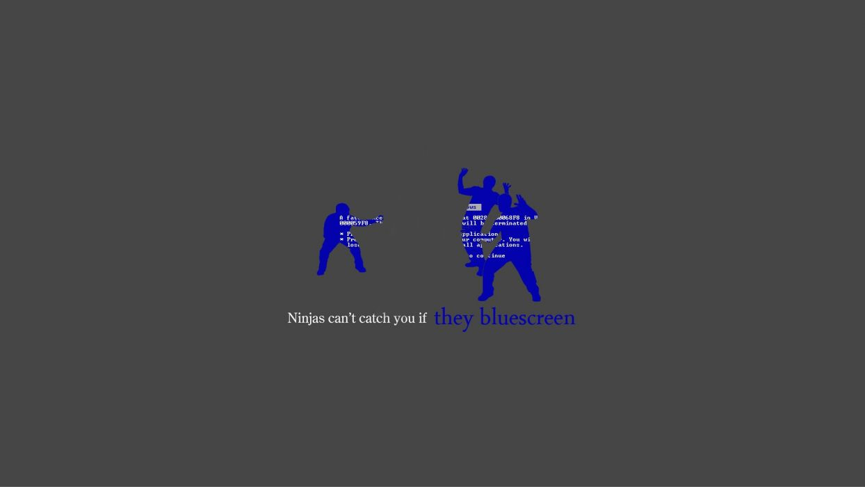 Ninjas Cant Catch You If Blue Screen Of Death Wallpaper